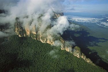 Chimanta Tepui, Canaima National Park, Venezuela  -  Thomas Marent