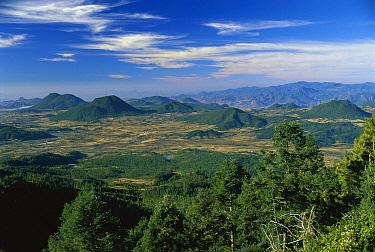 Temperate landscape, Michoacan, Mexico  -  Thomas Marent