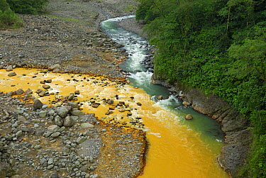 Rio Sucio laden with naturally occurring iron and sulfur deposits converging with crystal clear Rio Honduras, Braulio Carrillo National Park, Costa Rica  -  Thomas Marent
