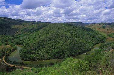 Atlantic Forest fragments interspersed in a largely denuded landscape, Minas Gerais, Brazil  -  Luciano Candisani
