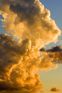 Cumulus clouds, Avare, Sao Paulo, Brazil  -  Luciano Candisani