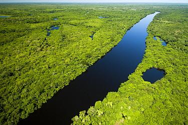 Rio Negro, Pantanal, Brazil  -  Luciano Candisani
