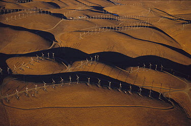 Windmills generating energy, Altamont Pass, California  -  Kevin Schafer
