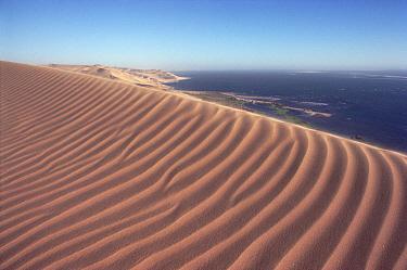 Rippled and patterned sand dunes of Namib Desert meet Atlantic Ocean, Namibia  -  Jim Brandenburg