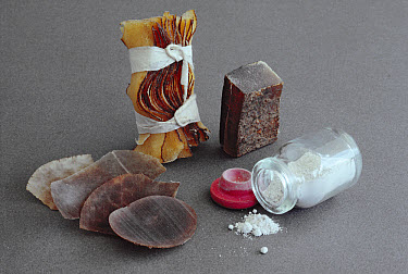 Medicinal products made from rhinoceros horn, Namibia  -  Jim Brandenburg