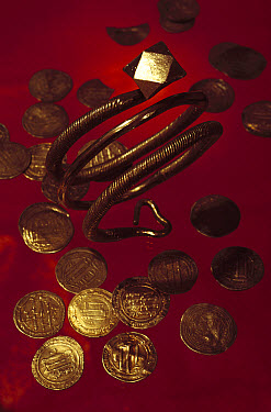 Coins and a bracelet made of Arabic silver that Vikings obtained through trade in what was formerly the Soviet Union, Russia  -  Jim Brandenburg