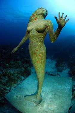 Underwater sculpture of a mermaid, Cayman Islands, Caribbean Sea  -  Hans Leijnse/ NiS