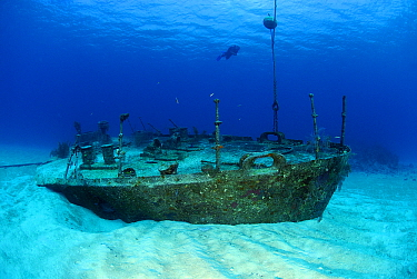 Remains of US destroyer, Cayman Islands, Caribbean  -  Hans Leijnse/ NiS
