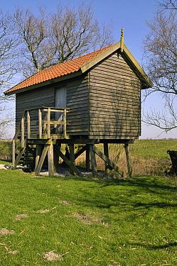 Birdwatching hut, Friesland, Netherlands  -  Philip Friskorn/ NiS