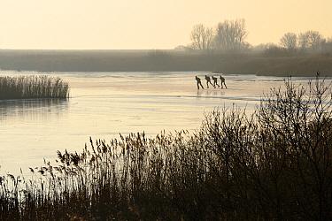 Ice skaters in mist on frozen lake, Friesland, Netherlands  -  Jasper Doest