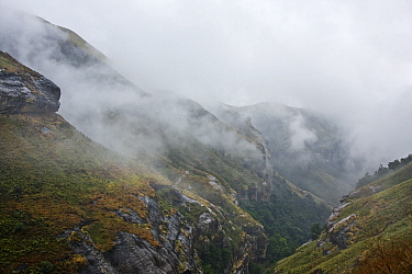 View over the Tugela Gorge covered in clouds, Royal Natal National Park, Drakensberg, South Africa  -  Vincent Grafhorst