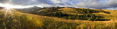 Drakensberg Mountains, Rugged Glen Nature Reserve, Drakensberg, South Africa  -  Vincent Grafhorst