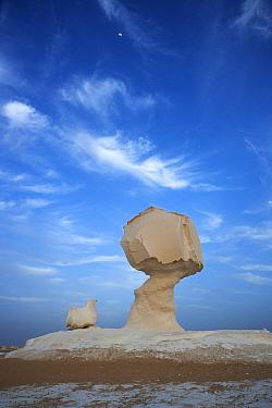 Limestone rock formations, White Desert National Park, Libyan Desert, Egypt  -  Stephen Belcher