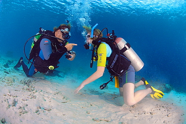 Child and instructor in a PADI scuba diving course, Bonaire, Netherlands Antilles  -  Hans Leijnse/ NiS