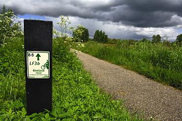 Cycling path under overcast sky, Lendevallei, Friesland, Netherlands  -  Philip Friskorn/ NiS
