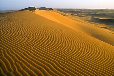 Sand dunes, Namib Desert, Swakopmund, Namibia  -  Chris Stenger/ Buiten-beeld