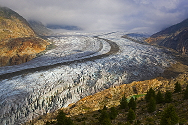 Glacier valley, Aletsch Glacier, Valais, Bernese Alps, Switzerland  -  Heike Odermatt