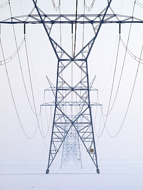 Powerline in winter, Flevoland, Netherlands  -  Melvin Redeker / Buiten-beeld