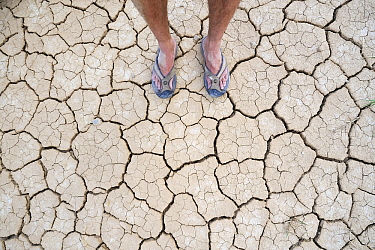 Feet on dry earth, Bardenas Reales, Navarre, Spain  -  Jasper Doest