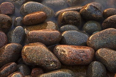 Granite boulders on the Atlantic coast, Acadia National Park, Maine  -  Vincent Grafhorst