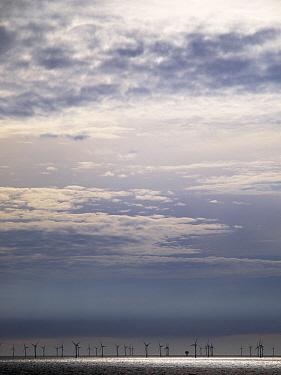 Wind turbines in ocean, Netherlands  -  Melvin Redeker / Buiten-beeld