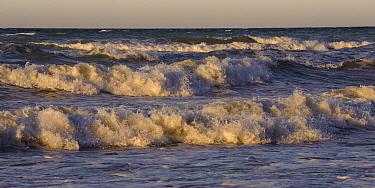 Surf, Rugen Island, Jasmund National Park, Mecklenburg Vorpommern, Germany  -  Willi Rolfes/ NIS