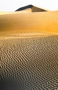 Sand Dunes, Sahara Desert, Mauritania  -  Melvin Redeker / Buiten-beeld