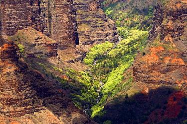 Waimea Canyon with cloud shadow, Hawaii  -  Otto Plantema/ Buiten-beeld