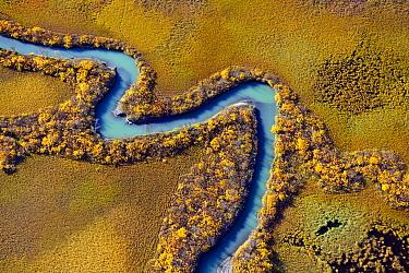 Rapa River delta, Sarek National Park, Laponia, Sweden  -  Sven Zacek/ NiS