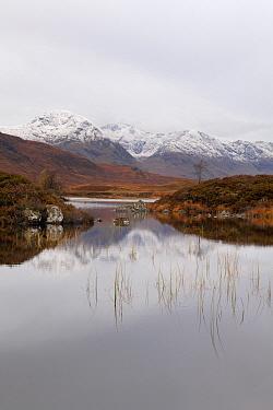 Black Mount and Lochan Na H-Achlaise, Rannoch Moor, Scotland  -  Bart Heirweg/ Buiten-beeld
