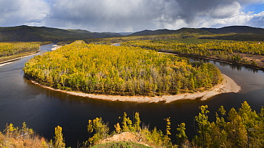 Landscape with river and forest in autumn, Moerdaoga, Inner Mongolia, China  -  Chris Stenger/ Buiten-beeld