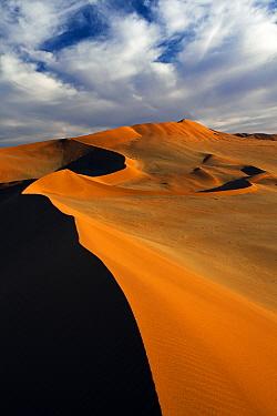 Desert landscape, Sossusvlei, Namib-Naukluft National Park, Namib Desert, Namibia  -  Vincent Grafhorst