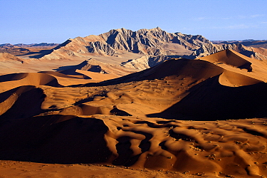 Sand dune landscape, Sossusvlei, Namib-Naukluft National Park, Namib Desert, Namibia  -  Vincent Grafhorst
