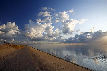 Sea dike in early morning  -  Duncan Usher