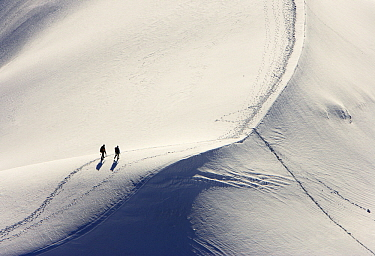 Alpinists hiking over snow field  -  Jasper Doest