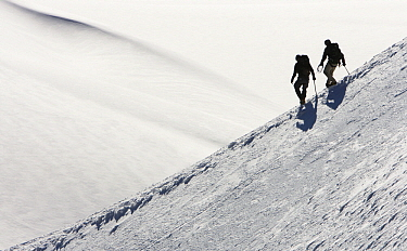 Alpinists hiking over snow  -  Jasper Doest
