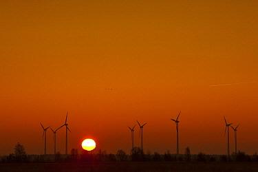 Wind turbines at sunset, Drenthe, Netherlands  -  Karin Broekhuijsen/ Buiten-beeld