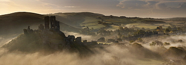 Ruins of Corfe Castle at sunrise surrounded by mist, Dorset, England, United Kingdom  -  Bart Heirweg/ Buiten-beeld