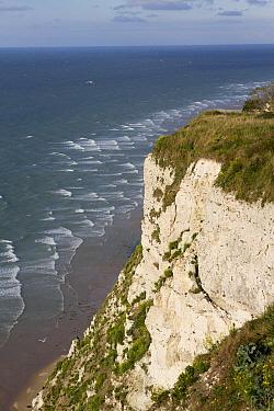 Coastal landscape showing chalk cliffs, Cap Blanc Nez, Pas-de-Calais, France  -  Marcel Klootwijk/ NiS
