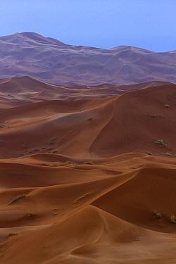 Desert dunes, Erg Chebbi, Morocco  -  Marcel Klootwijk/ NiS