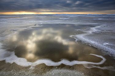 Icy landscape, Friesland, Netherlands  -  Karin Broekhuijsen/ Buiten-beeld