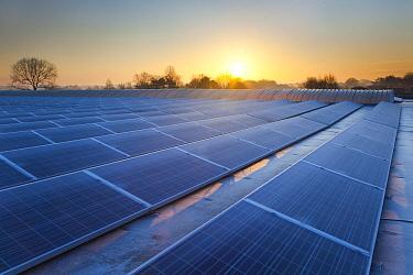 Industrial solar panels, Belgium  -  Bart Heirweg/ Buiten-beeld