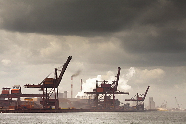 Harbor with industrial cranes, Dunkirk, France  -  Bart Heirweg/ Buiten-beeld