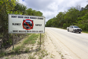 Road sign warning drivers of crabs on road, Christmas Island National Park, Christmas Island, Australia  -  Stephen Belcher