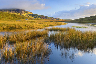 Loch Leathan and Old Man of Storr, Isle of Skye, Scotland, United Kingdom  -  Bart Heirweg/ Buiten-beeld