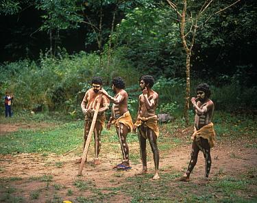 Australia, People Four Aborigine people from the 'Kuku Yalanji' tribe  -  E A Otto/ FLPA