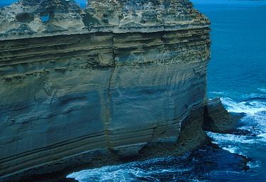 Fossils Loch Ard Gorge & strata of fossils, Australia  -  Michael Hollings/ FLPA