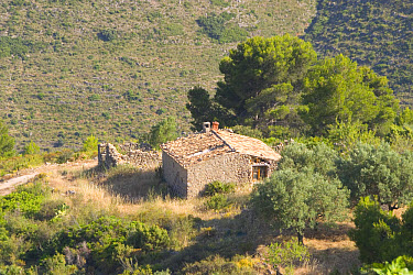 Spain, Old farm house Property ready for redevelopment Costa Blanca  -  David Hosking/ FLPA