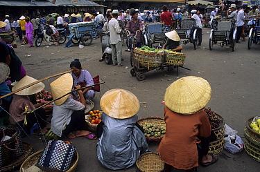 Market, Fruit sellers in pointy hats, Cho Lon, Ho Chi Minh City (Saigon), Vietnam  -  Colin Marshall/ FLPA
