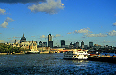 London, City of London, view from Thames with Saint Pauls Cathedral and Canary Wharf  -  Hugh Clark/ FLPA